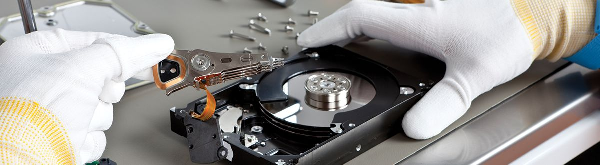 Recover data corrupted hard drive