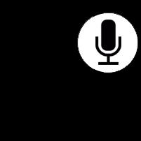 iPad_microphone